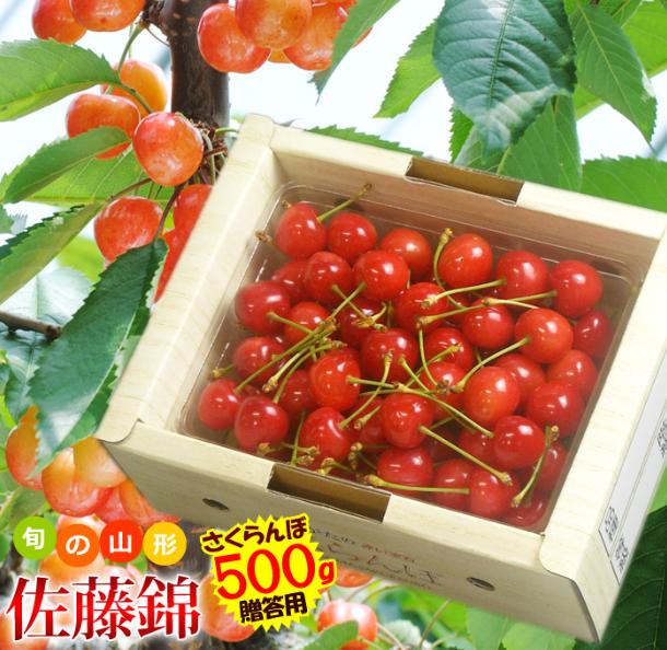 Bí mật đằng sau loại Cherry nhập khẩu có giá đắt nhất thế giới