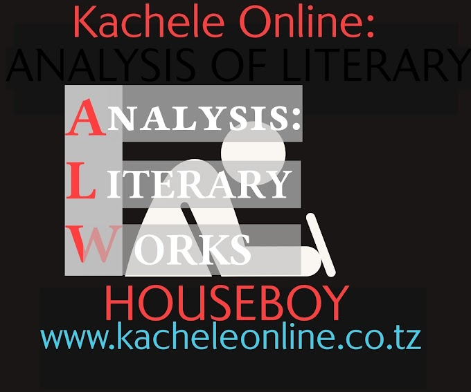 Houseboy: Novel Analysis Part 6: Themes, Message, Lesson, Philosophy & Relevance of the Novel