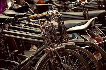 Popular bikes