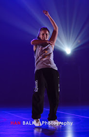 Han Balk Voorster Dansdag 2016-4159.jpg