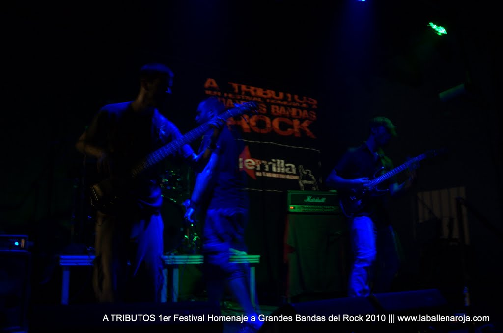 A TRIBUTOS 1er Festival Homenaje a Grandes Bandas del Rock 2010 - DSC_0247.jpg