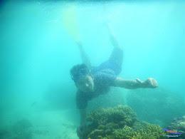 pulau pari, 23-24 mei 2015 25