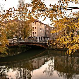 A dull Padova November evening by Hariharan Venkatakrishnan - City,  Street & Park  Vistas