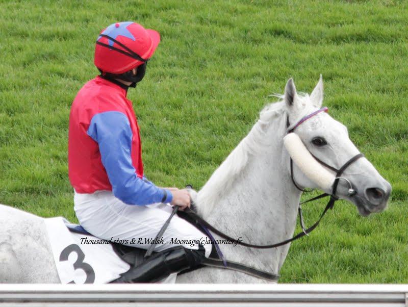 Photos Auteuil 7-11-2015 (48h de l'obstacle) IMG_6541