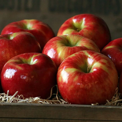 Massachusetts farm security guards wrongly accuse black family of stealing six apples