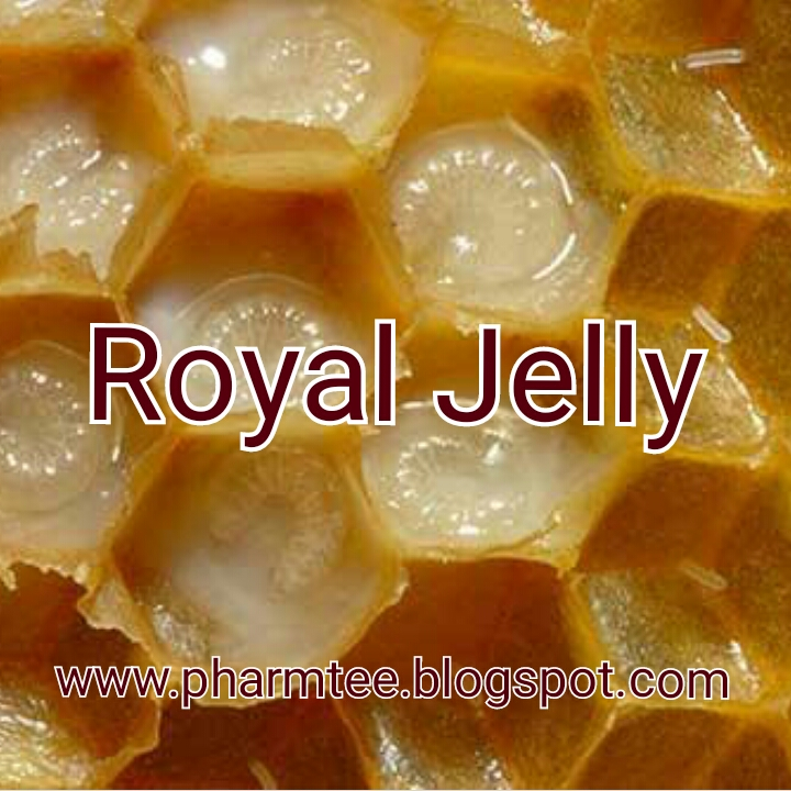 Royal Jelly: Beauty and the Foodie