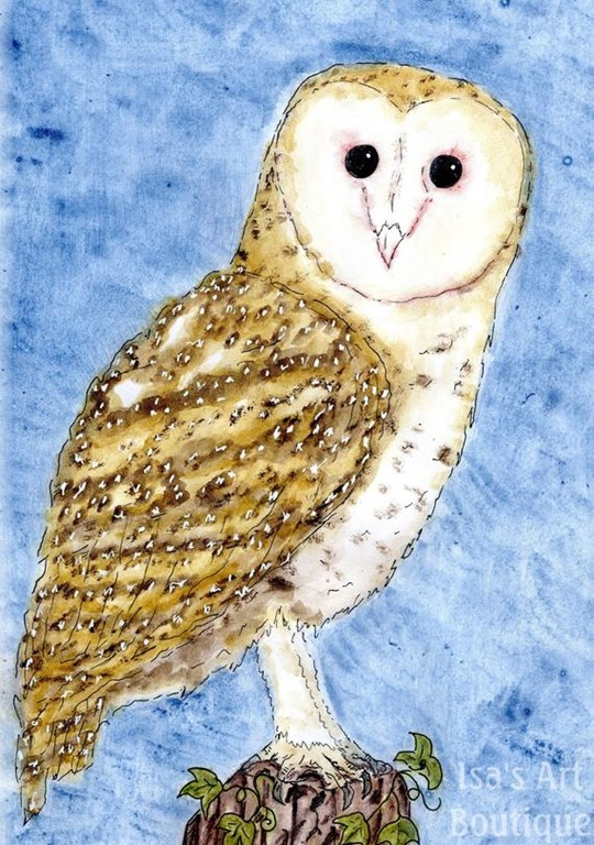 [Barn+Owl%5B2%5D]
