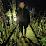 Darius Tereikis's profile photo