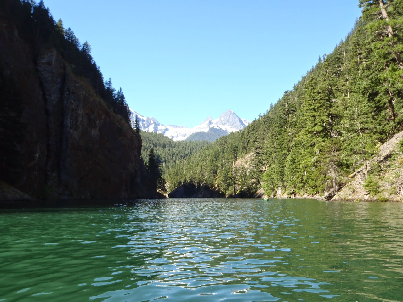 Ross Lake July 2014 - P7080070.JPG