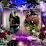 Gary n Shari Loehr's profile photo