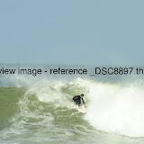 _DSC8897.thumb.jpg