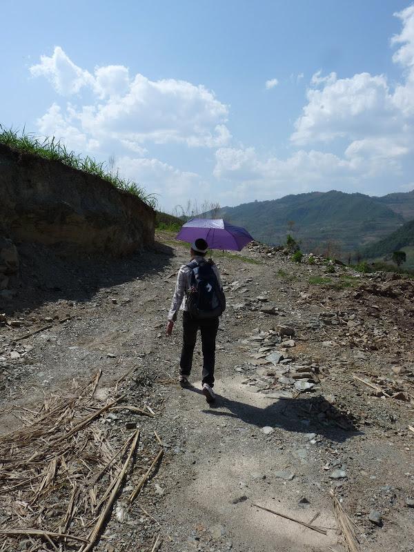 Chine: randonnée xishangbanna, région de Bada - Picture1%2B831.jpg