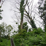 06-23-13 Big Island Waterfalls, Travel to Kauai - IMGP8865.JPG