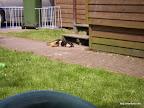 Malon nimmt ein Sonnenbad