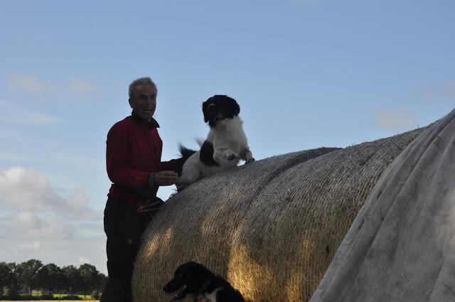 Survival voor Baas en Hond 2012 - DSC_0220.JPG