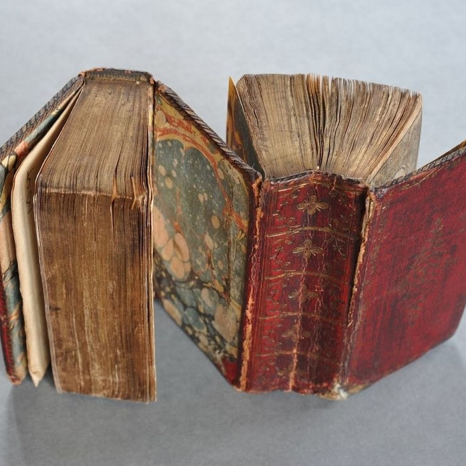Medieval 'dos-à-dos' Book Bindings