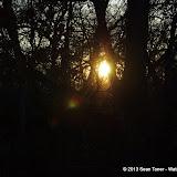 01-05-13 Arbor Hills Nature Preserve - IMGP3989.JPG