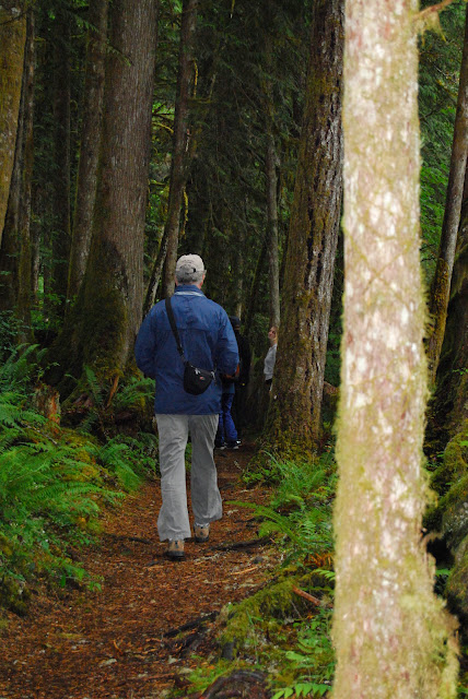 Walking between the dense tree on the Horseshoe Bend TrailCredit: Bellingham Whatcom County Tourism