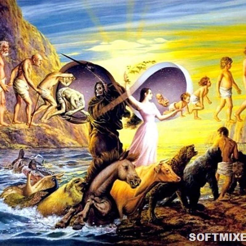 25 неразрешённых загадок эволюции