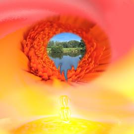 waterdrop by Paul Wante - Digital Art Abstract ( digital, art, waterdrop, yellow, abstract )