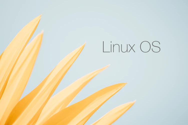 Kenapa Saya Pilih Linux, Berikut ini Ulasannya