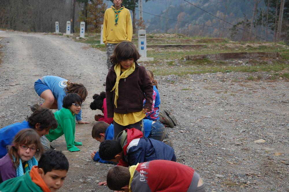 Sortida Castors i Llops a la Roca del Secut 2010 - DSC_0801.JPG