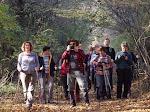 2015. 10. 31. Máriaremete - Zsíros-hegy