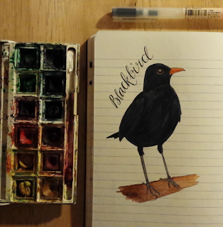 www.AliceDrawsTheLine.co.uk :: Blackbird
