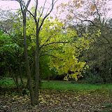 Fotos Sortida Raiers 2006 - PICT1928.JPG