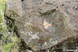 A few more bighorn petroglyphs.