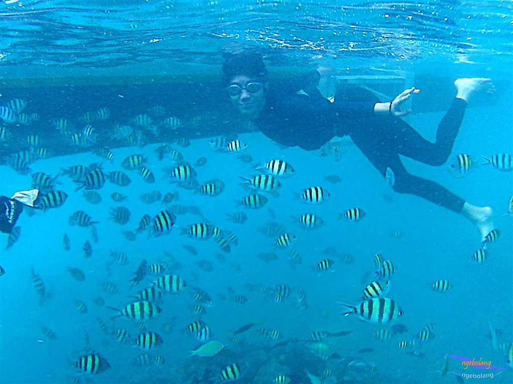 pulau harapan, 6-7 juni 2015 samsung gopro be 20