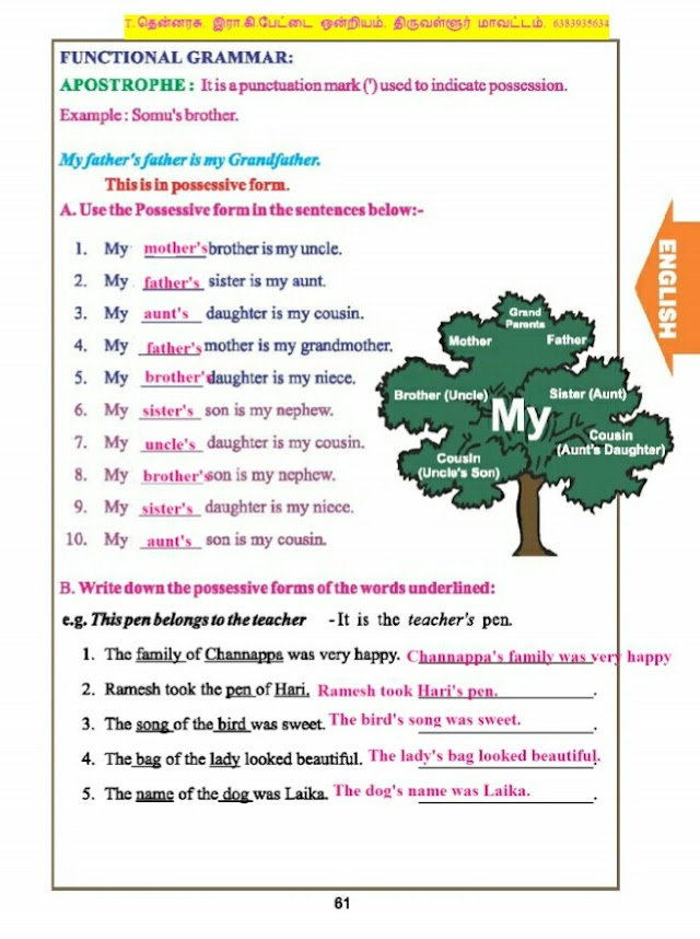 Book Back Exercise With Answers - 3rd Std - Term 3 - English  மூன்றாம் வகுப்பு, ஆங்கில புத்தகப் பயிற்சி மற்றும் பாடத்தின் இடையில் வரும் பயிற்சிகளுக்கான விடைகள்