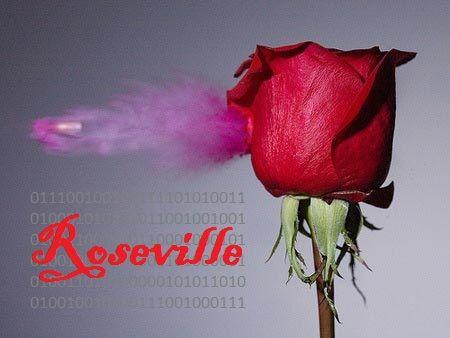 Roseville%252520Sign.jpg