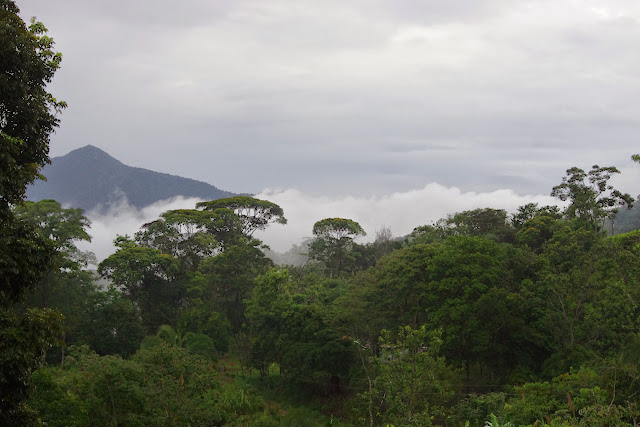 Santa Fe (Veraguas, Panamá), 19 octobre 2014. Photo : J.-M. Gayman