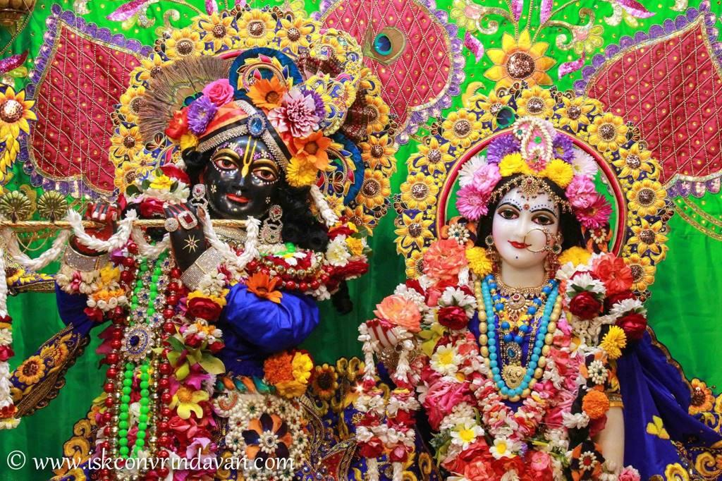 ISKCON Vrindavan Sringar Deity Darshan 01 Mar 2016 (2)