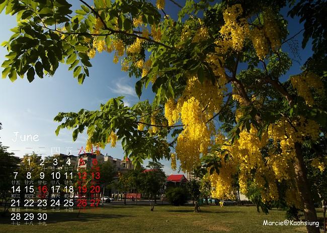 diy 月曆 高雄 阿勃勒 六月
