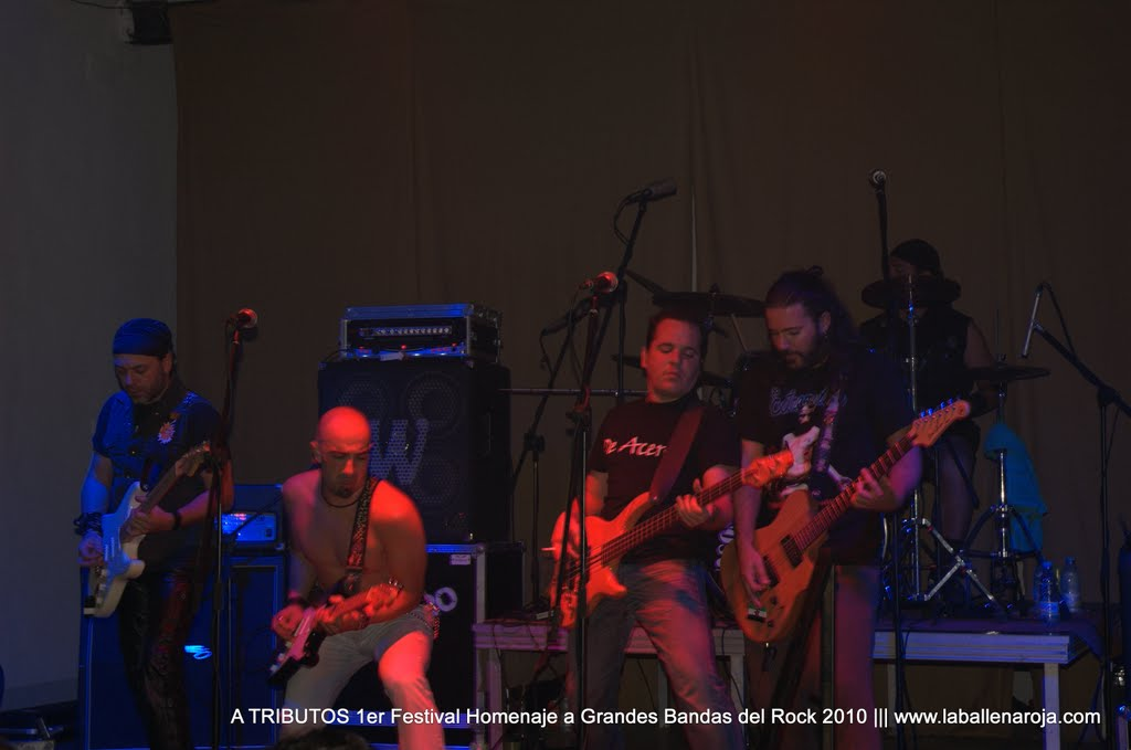 A TRIBUTOS 1er Festival Homenaje a Grandes Bandas del Rock 2010 - DSC_0114.jpg
