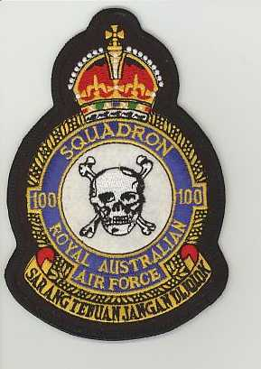 RAAF 100sqn crown.JPG