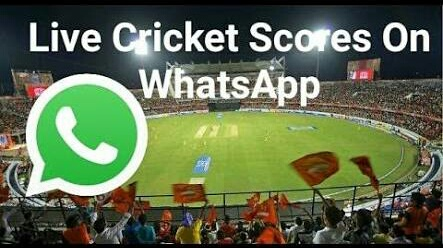 How to Get IPL Live Cricket Scores On WhatsApp Instantly? (Free)