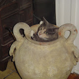 Grace is stuck in the urn.