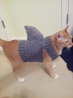 crocheted shark cat