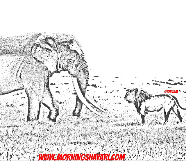 Lion, Elephant, Jungle King, wildlife photography, Nature Sketches, Drawing, Poem, Lines, Forest, Jungle, Tiger, grass, field,
