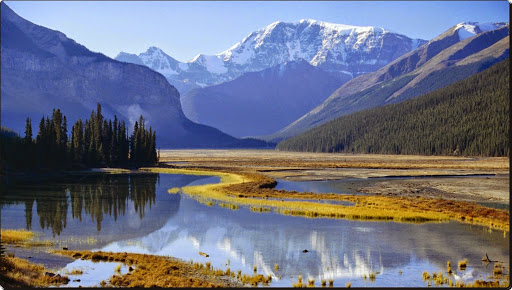 Mount Kitchener and Sunwapta River, Jasper National Park, Alberta.jpg