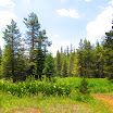 cannell_trail_IMG_1797.jpg