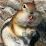 "Roxann ""Billie"" Pappas's profile photo"