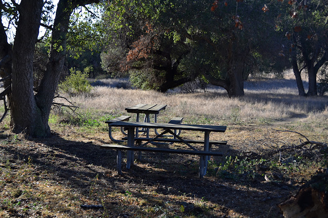 two picnic tables