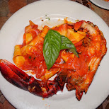 lobster at Sylvanos in Miami, Florida, United States