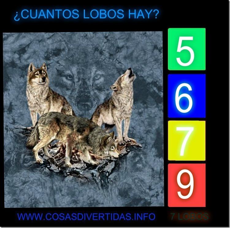 7LOBOS