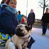 2015-04-07 Hundeschule Immenreuth On Tour in Marktredwitz im Auenpark - Marktredwitz%2B%252816%2529.jpg