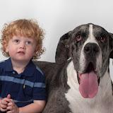 Dynamite Danes Family Album #3 - Brody%2Band%2BGriffin%2B082.jpg